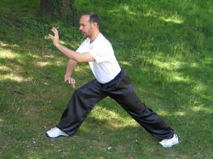 Hung Gar boxe Shaolin du sud